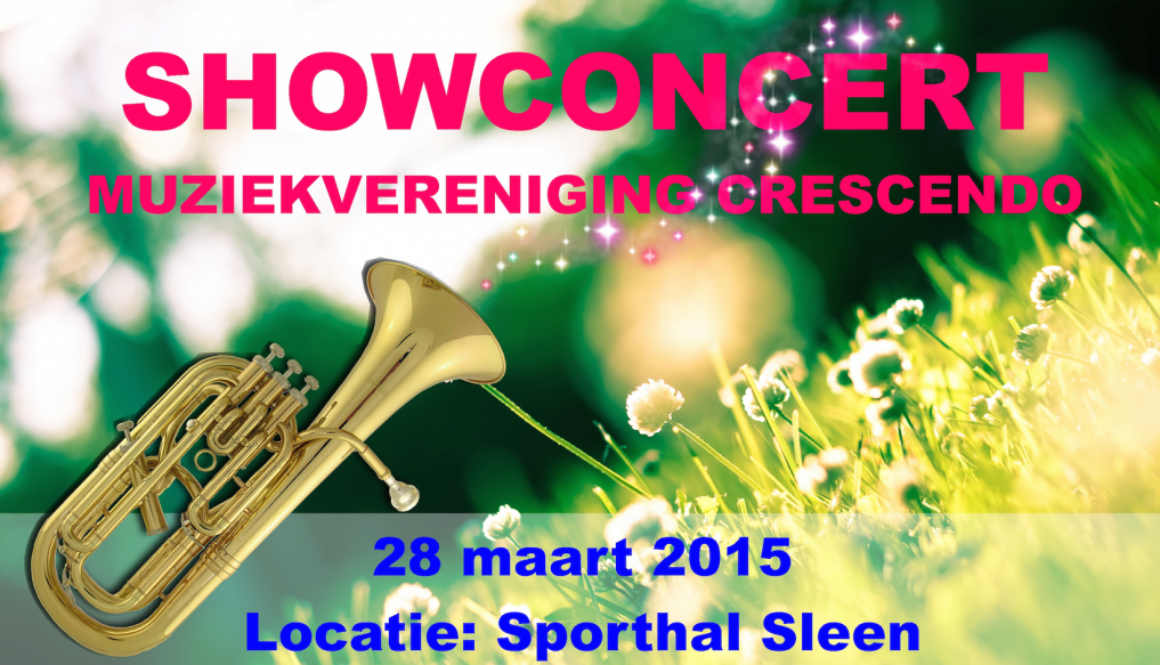 poster showconcert_fi